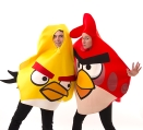 Petrecere Angry Birds